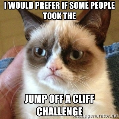 Grumpy Cat  - i would prefer if some people took the jump off a cliff challenge