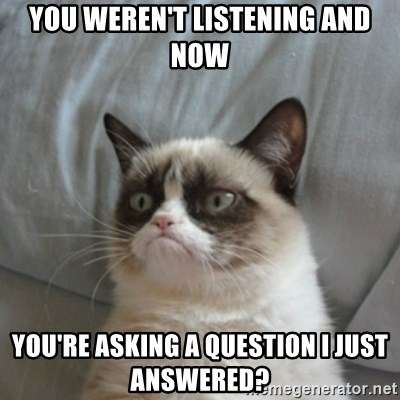 Grumpy Cat ={ - You weren't listening and now you're asking a question I just answered?