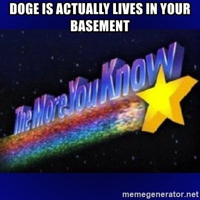 The more you know - doge is actually lives in your basement