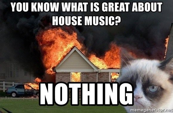 grumpy cat 8 - You Know What is great about house music? nothing