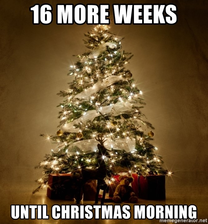 How Many Days Until Christmas Meme.How Much More Weeks Until Christmas Fxund Us