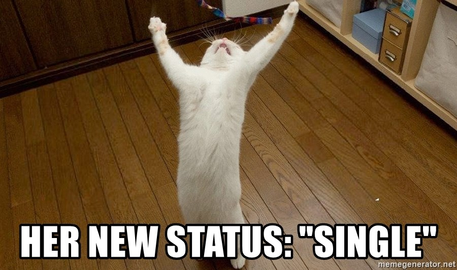 """praise the lord cat -  her new status: """"single"""""""