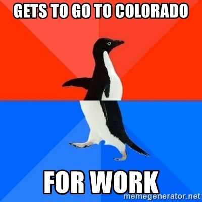 Socially Awesome Awkward Penguin - Gets to go to Colorado For work