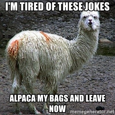 Drama Llama - I'm tired of these jokes Alpaca my bags and leave now