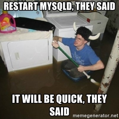 laundry room viking 2012 - restart mysqld, they said it will be quick, they said