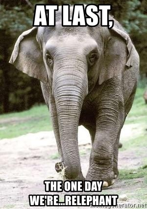 Eating Disordered Elephant  - at last, the one day we're...Relephant