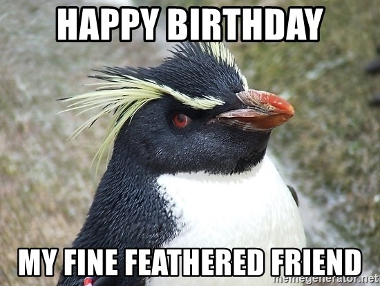 So What Penguin - Happy Birthday my fine feathered friend
