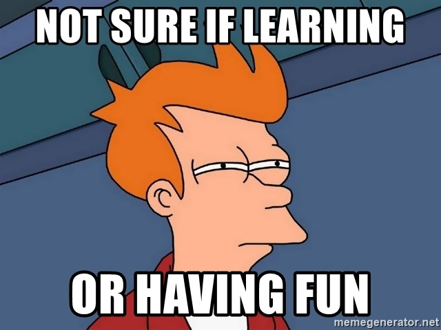 "Image result for ""learning or having fun"" meme"