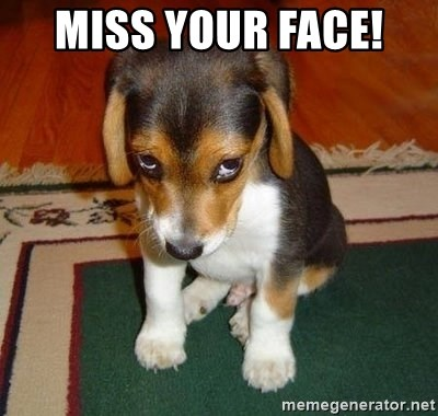 Sad Puppy - Miss your face!