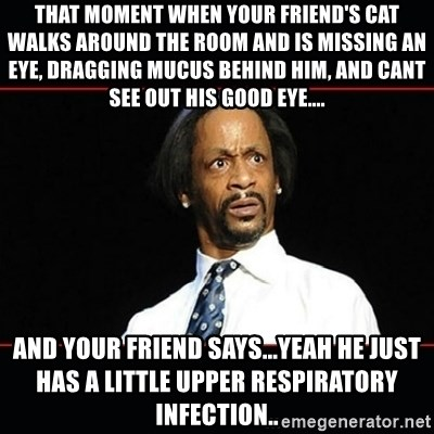 katt williams shocked - That moment when your friend's cat walks around the room and is missing an eye, dragging mucus behind him, and cant see out his good eye.... And your friend says...yeah he just has a little upper respiratory infection..