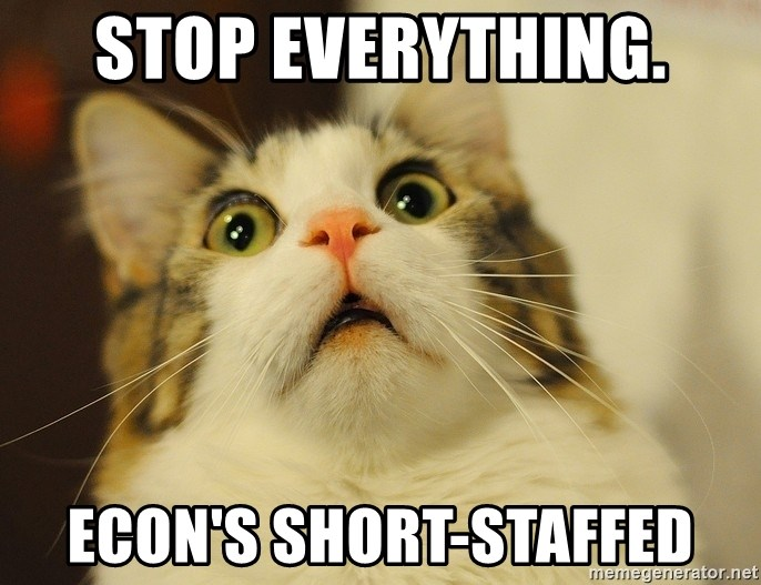panic cat face - stop everything. Econ's short-staffed