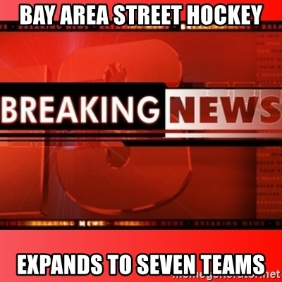 BAY AREA STREET HOCKEY Expands to seven teams - This
