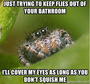 Just Trying To Keep Flies Out Of Your Bathroom I Ll Cover