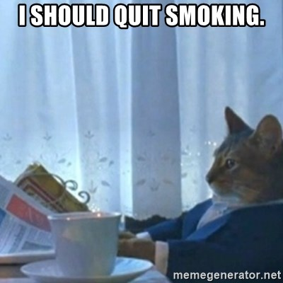 Sophisticated Cat Meme - I should quit smoking.