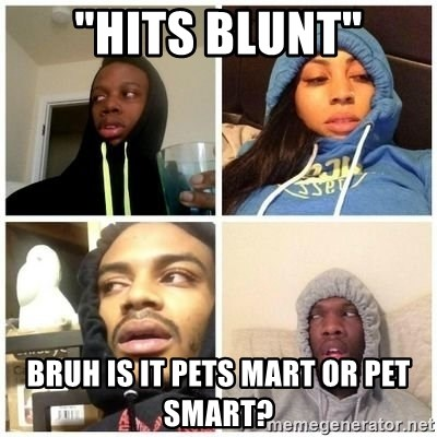 "Hits Blunts - ""hits blunt"" bruh is it pets mart or pet smart?"