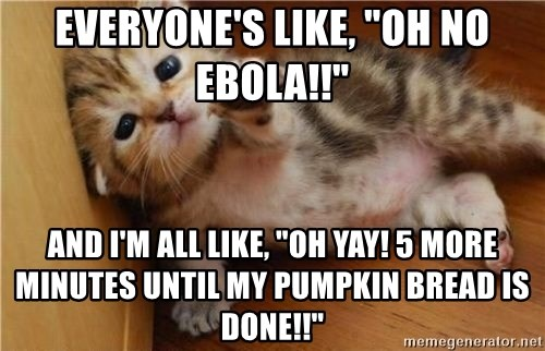 Everyone S Like Oh No Ebola And I M All Like Oh Yay 5 More Minutes Until My Pumpkin Bread Is Done Fallen Kitten Meme Generator Dicky spanish lil omg espanol giphy gifs ohmygod monse garcia. meme generator