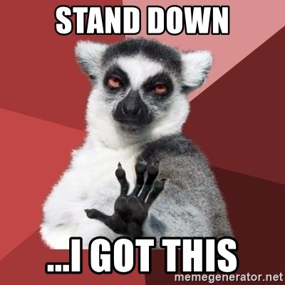 55080836 stand down i got this chill out lemur meme generator,Stand Down Meme