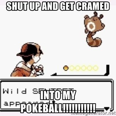 a wild pokemon appeared - SHUT UP AND GET CRAMED  INTO MY POKEBALL!!!!!!!!!!!