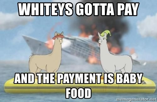 WHITEYS GOTTA PAY AND THE PAYMENT IS BABY FOOD - Llamas with ...