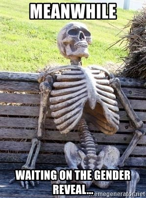 55449782 meanwhile waiting on the gender reveal waiting skeleton meme
