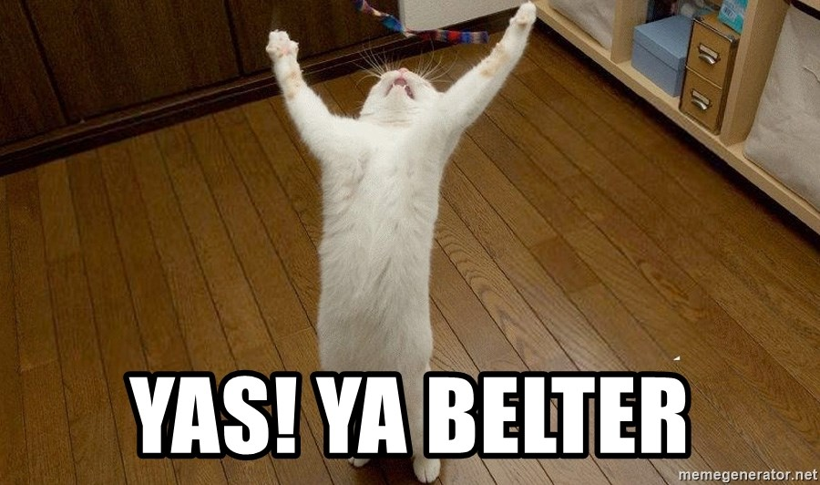 praise the lord cat - YAS! YA BELTER