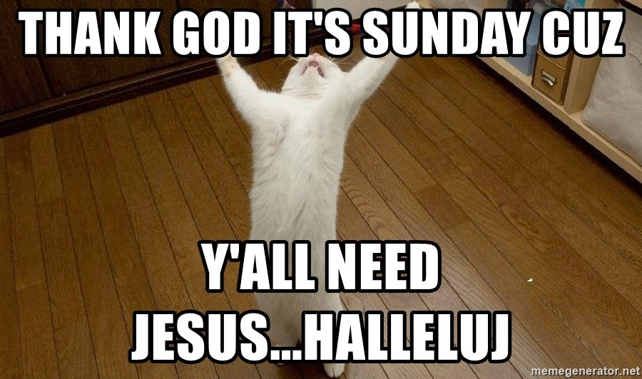 praise the lord cat - Thank GOD it's Sunday cuz y'all need JESUS...Halleluj