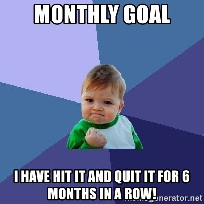Monthly Goal I have hit it and quit it for 6 months in a row! - Success Kid  | Meme Generator