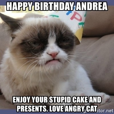 Birthday Grumpy Cat - Happy birthday Andrea  Enjoy your stupid cake and presents. Love angry cat