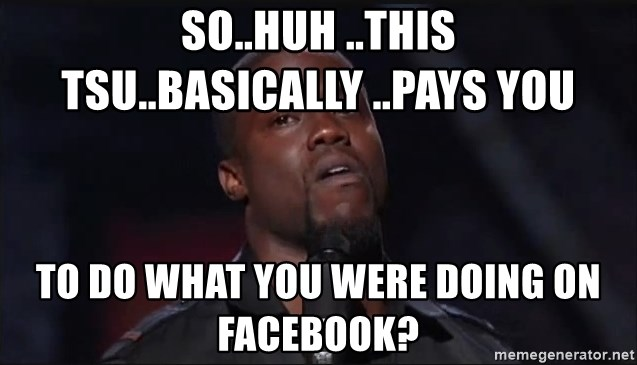 Kevin Hart Face - So..huh ..this tsu..basically ..pays you to do what you were doing on facebook?