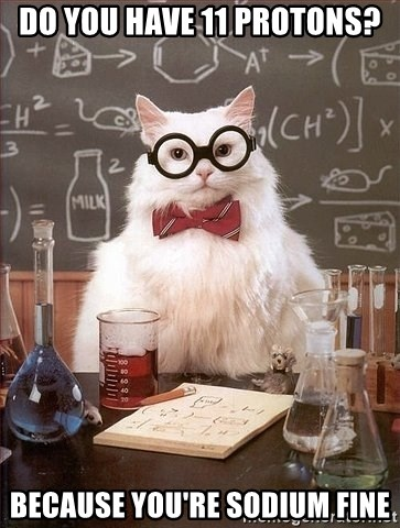 Chemistry Cat - Do you have 11 protons? Because you're sodium fine