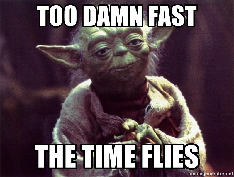 Image result for time flies meme