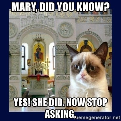 Grumpy Orthodox Cat - Mary, did you know? Yes! she did. now stop asking.