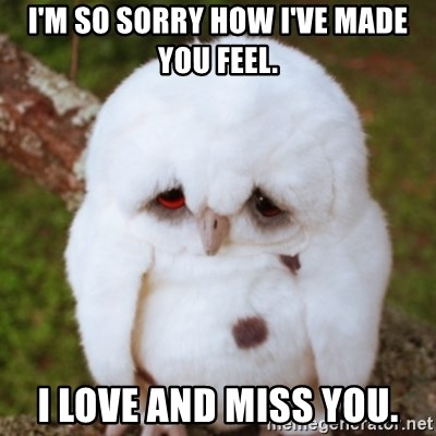 Sad Owl Baby - I'm so sorry how I've made you feel. I love and miss you.