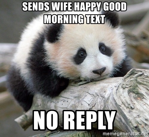 To good morning text reply 24 Simple