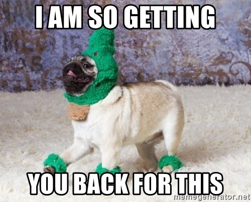 Christmas Pugg - I am so getting you back for this