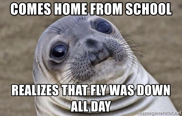 Awkward Seal - comes home from school realizes that fly was down all day