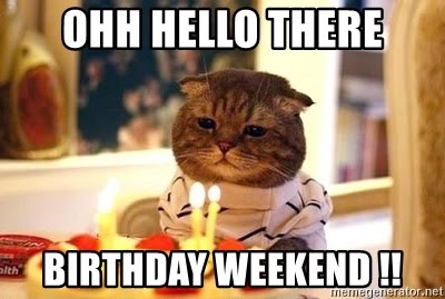 Birthday Cat - Ohh hello there Birthday weekend !!