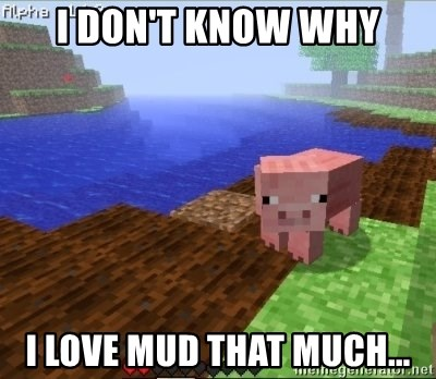 Minecraft PIG - I don't know why i love mud that much...