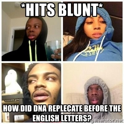 Hits Blunts - *hits blunt* How did DNA Replecate before the English letters?
