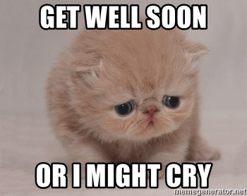 Super Sad Cat - Get well soon Or I might cry