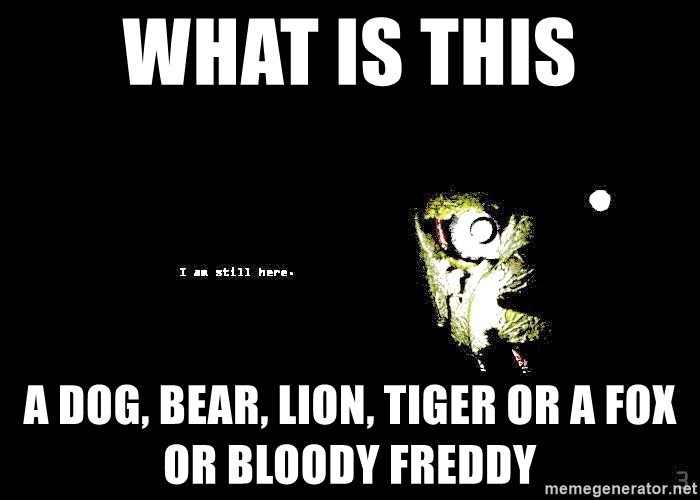 what is this a dog, bear, lion, tiger or a fox or BLOODY