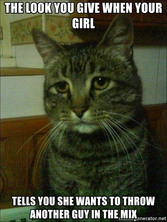 Depressed cat 2 - the look you give when your girl tells you she wants to throw another guy in the mix