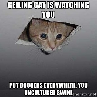 Ceiling Cat Is Watching You Put Boogers Everywhere You Uncultured Swine Ceiling Cat Meme Generator Somebody who is oblivious to popular culture. ceiling cat is watching you put boogers