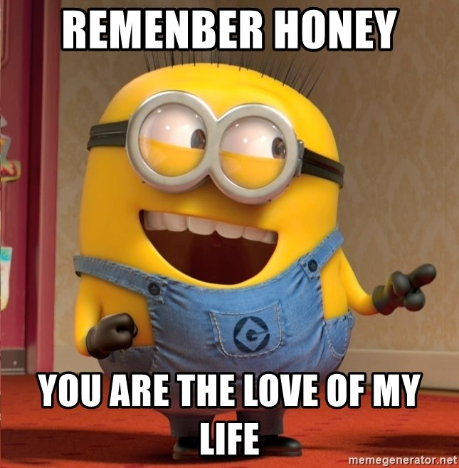 dave le minion - remenber honey  you are the love of my life