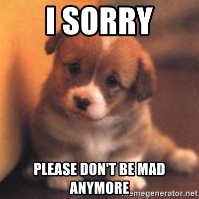 cute puppy - I sorry Please don't be mad anymore