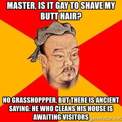 Chinese Proverb - MASTER, IS IT GAY TO SHAVE MY BUTT HAIR? NO GRASSHOPPPER, BUT THERE IS ANCIENT SAYING: HE WHO CLEANS HIS HOUSE IS AWAITING VISITORS