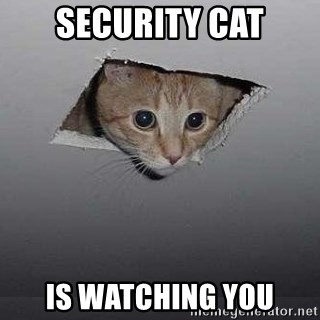 security-cat-is-watching-you.jpg