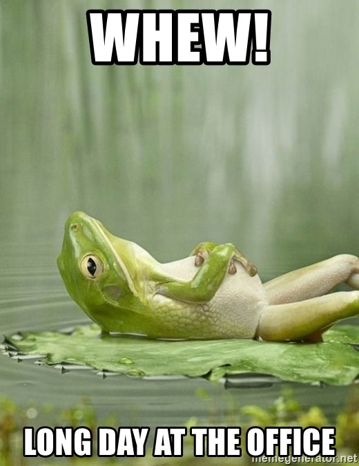 IDGAF Frog - WHEW! LONG DAY AT THE OFFICE