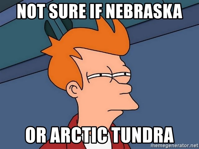 Futurama Fry - Not sure if Nebraska or Arctic tundra