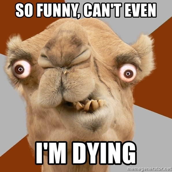 Crazy Camel lol - So funny, can't even i'm dying